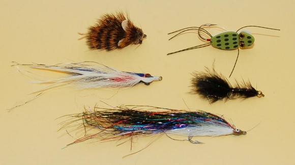 selection of fly fishing lures