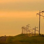 telephone poles at dusk